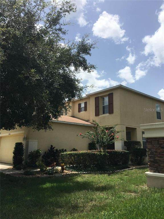 9725 Simeon Drive, Land O Lakes, FL 34638 (MLS #U8079091) :: Cartwright Realty