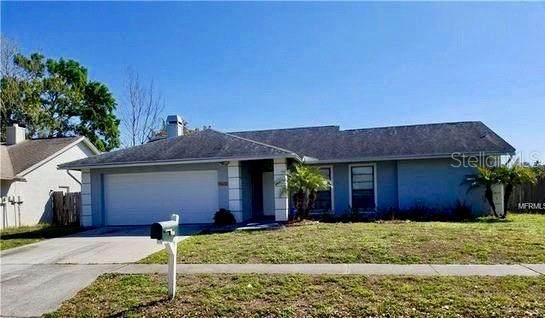 6531 Seafairer Drive, Tampa, FL 33615 (MLS #U8080252) :: Charles Rutenberg Realty