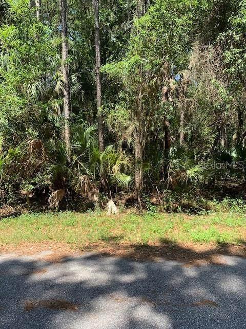 Greenley Circle, North Port, FL 34286 (MLS #U8085111) :: Team Bohannon Keller Williams, Tampa Properties