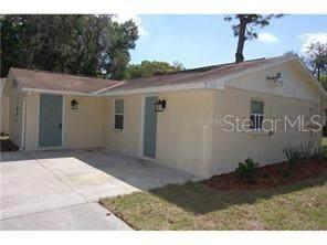 10619 Davis Road, Tampa, FL 33637 (MLS #U8085367) :: Griffin Group