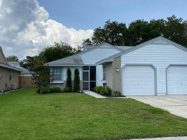 341 Phlox Drive, Palm Harbor, FL 34684 (MLS #U8086173) :: The Duncan Duo Team