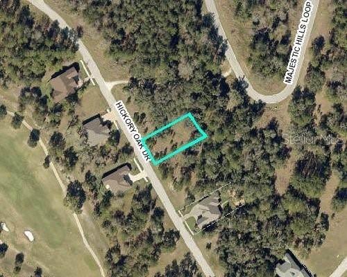4586 Hickory Oak Drive, Brooksville, FL 34601 (MLS #U8088723) :: Zarghami Group