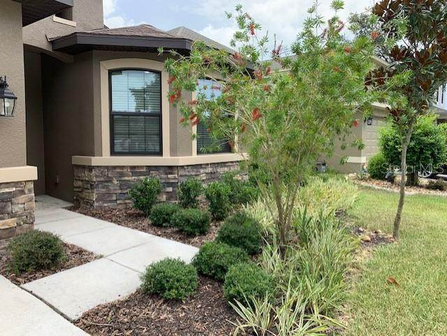 12500 Cricklewood Drive, Spring Hill, FL 34610 (MLS #U8089226) :: Florida Real Estate Sellers at Keller Williams Realty