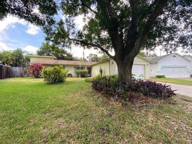 6311 Elmhurst Drive N, Pinellas Park, FL 33782 (MLS #U8089519) :: Team Borham at Keller Williams Realty