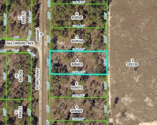 16352 Pomp Parkway, Weeki Wachee, FL 34614 (MLS #U8089700) :: Griffin Group