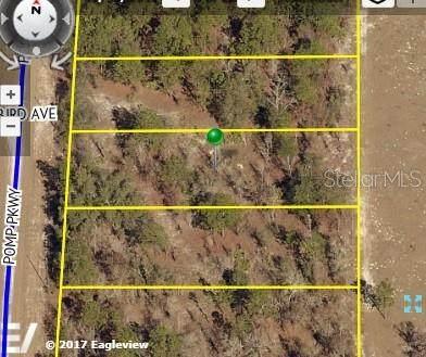 16456 Pomp Parkway, Weeki Wachee, FL 34614 (MLS #U8089705) :: Griffin Group