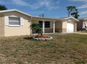 7425 Seashore Drive, Port Richey, FL 34668 (MLS #U8089846) :: Team Bohannon Keller Williams, Tampa Properties