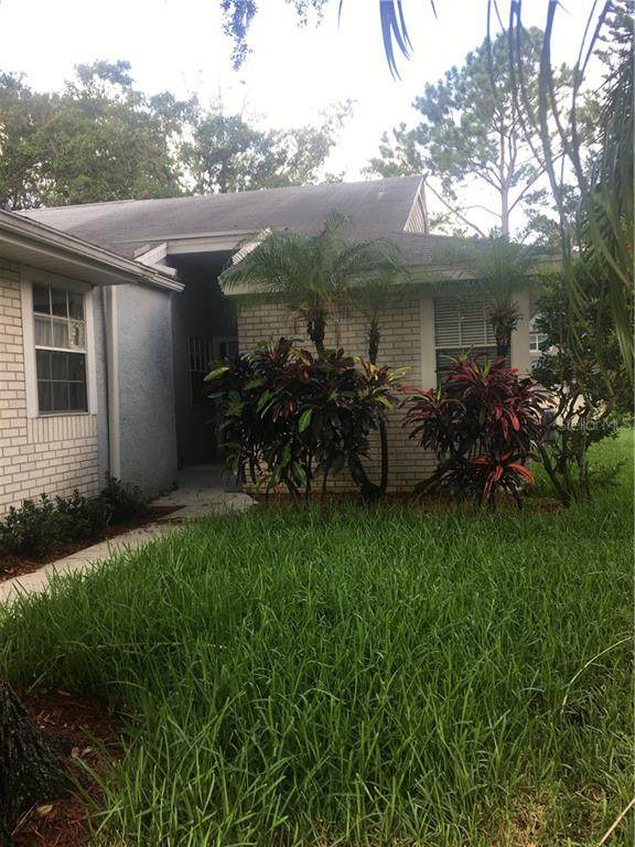 Address Not Published, Palm Harbor, FL 34684 (MLS #U8090208) :: Baird Realty Group