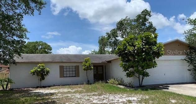 3729 Greenford Street, Valrico, FL 33596 (MLS #U8090699) :: Team Borham at Keller Williams Realty