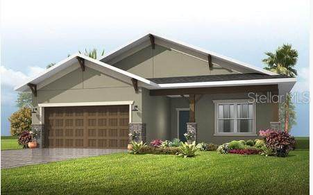 11415 Tanner Ridge Place, Riverview, FL 33569 (MLS #U8092491) :: Premier Home Experts