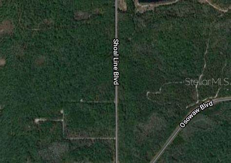 Shoal Line Boulevard, Spring Hill, FL 34607 (MLS #U8092838) :: Griffin Group
