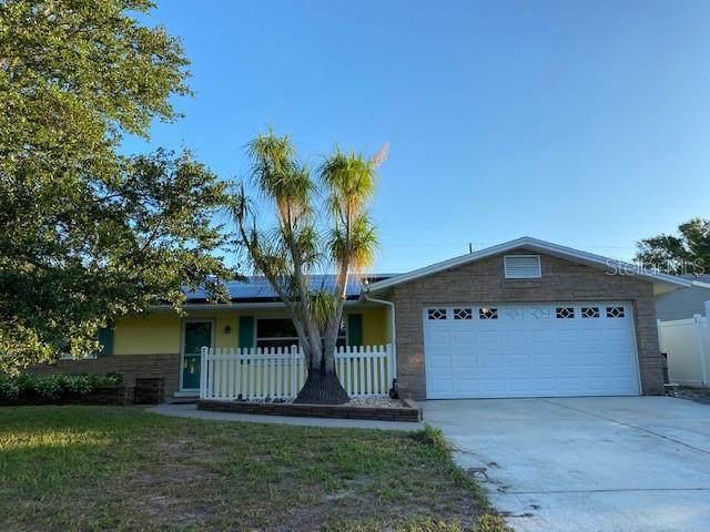 3058 Hoyt Avenue, Clearwater, FL 33759 (MLS #U8093712) :: Griffin Group