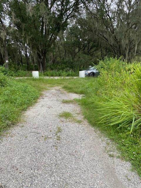 000 E Holloman Road, Plant City, FL 33567 (MLS #U8096430) :: Team Buky