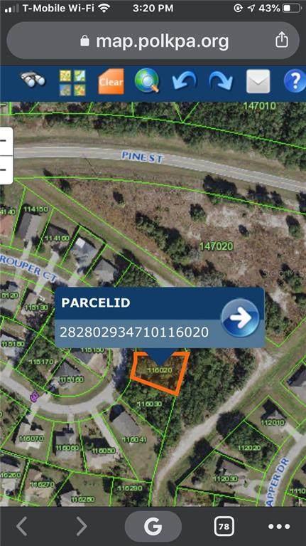 241 Grouper Court, Poinciana, FL 34759 (MLS #U8097944) :: Bustamante Real Estate