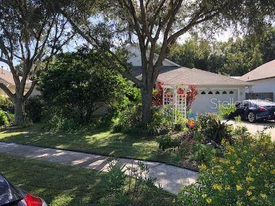 18217 Sweet Jasmine Drive, Tampa, FL 33647 (MLS #U8098853) :: Team Bohannon Keller Williams, Tampa Properties