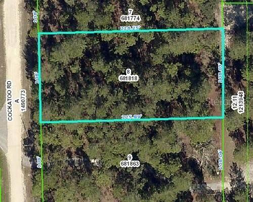 8358 Cockatoo Road, Weeki Wachee, FL 34613 (MLS #U8101115) :: Griffin Group