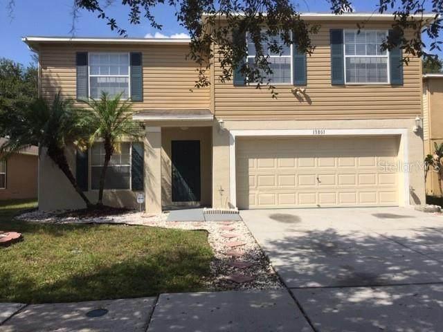 13801 Vanderbilt Road, Odessa, FL 33556 (MLS #U8101558) :: Team Bohannon Keller Williams, Tampa Properties