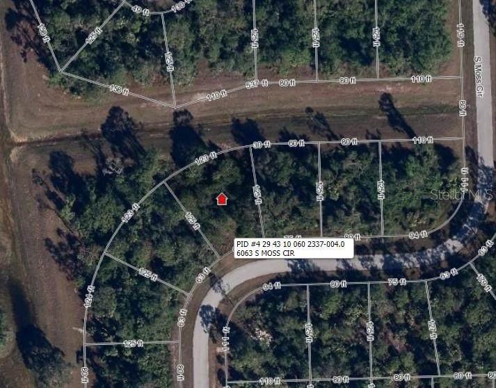 6063 Moss Circle - Photo 1