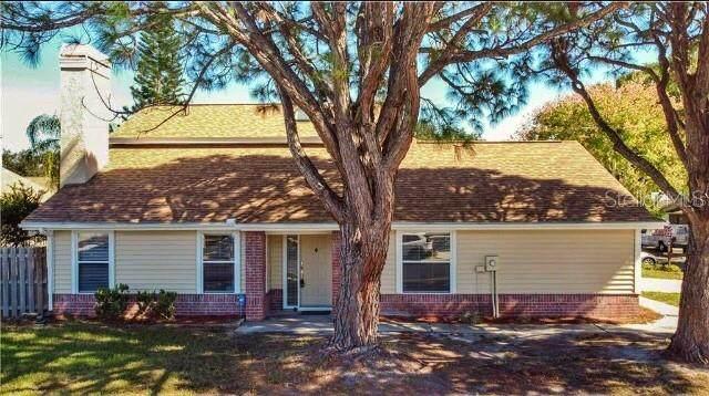 1840 Springbush Lane, Clearwater, FL 33763 (MLS #U8103137) :: Godwin Realty Group