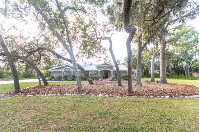 6874 County Road 95, Palm Harbor, FL 34684 (MLS #U8104989) :: The Figueroa Team
