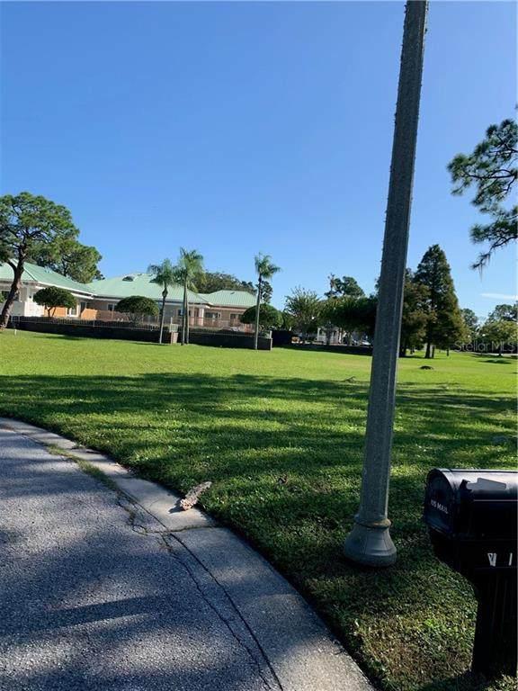 Otter Court, Tarpon Springs, FL 34689 (MLS #U8105629) :: Delta Realty, Int'l.