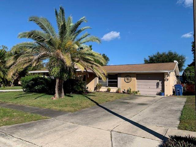4238 Gray Squirrel Lane, New Port Richey, FL 34653 (MLS #U8105710) :: Dalton Wade Real Estate Group