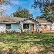 15712 Jackie Lane, Hudson, FL 34669 (MLS #U8106048) :: Griffin Group