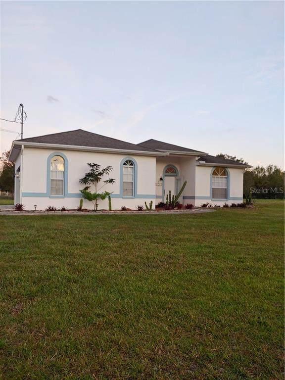 3206 Steeplechase Road W, Wesley Chapel, FL 33543 (MLS #U8106142) :: The Kardosh Team