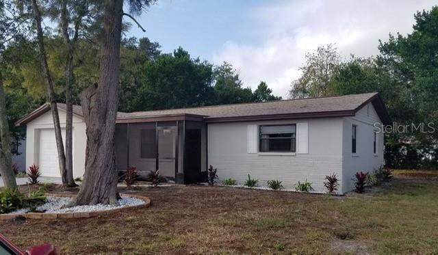 1421 Whitehall Lane, Holiday, FL 34691 (MLS #U8106399) :: Cartwright Realty