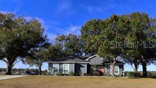 1789 NW 83RD LOOP, Ocala, FL 34472 (MLS #U8109608) :: Young Real Estate