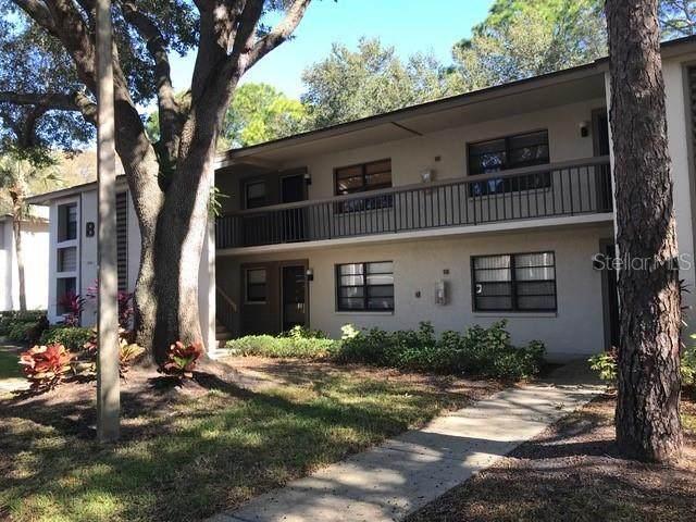 3032 Eastland Boulevard B202, Clearwater, FL 33761 (MLS #U8110523) :: Team Pepka
