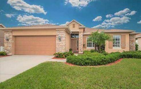 10637 Gooseberry Court, Trinity, FL 34655 (MLS #U8113798) :: Premier Home Experts