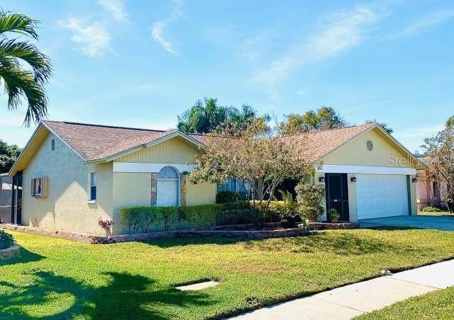 8140 Somerset Drive, Largo, FL 33773 (MLS #U8114694) :: Bustamante Real Estate