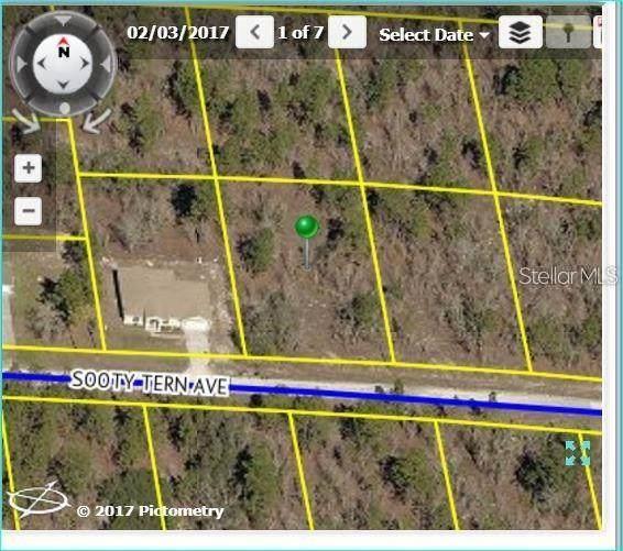 0 Sooty Tern Avenue, Weeki Wachee, FL 34614 (MLS #U8115004) :: Delta Realty, Int'l.