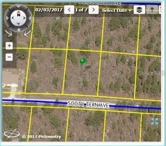 Sooty Tern Avenue, Weeki Wachee, FL 34614 (MLS #U8115005) :: Delta Realty, Int'l.