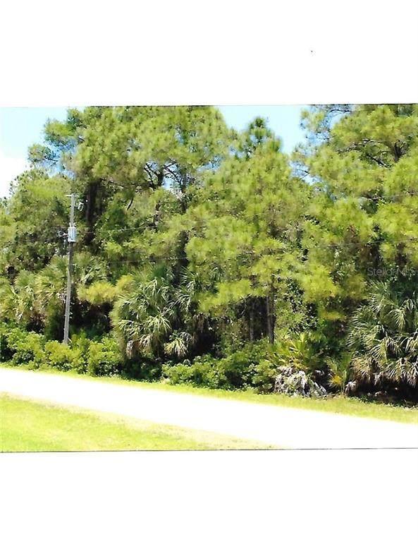 Tishman Avenue, North Port, FL 34286 (MLS #U8118452) :: Armel Real Estate