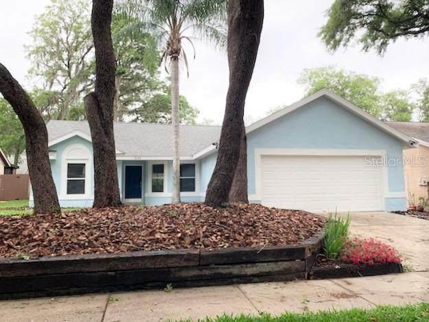 4125 Moreland Drive, Valrico, FL 33596 (MLS #U8119498) :: Young Real Estate