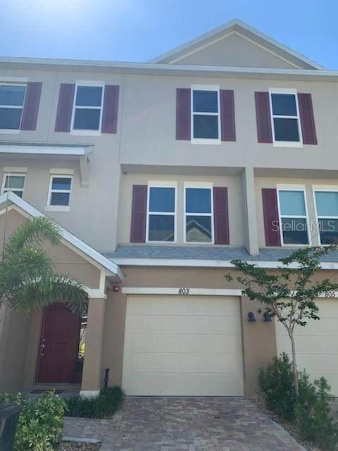 803 Callista Cay Loop, Tarpon Springs, FL 34689 (MLS #U8119636) :: Team Borham at Keller Williams Realty