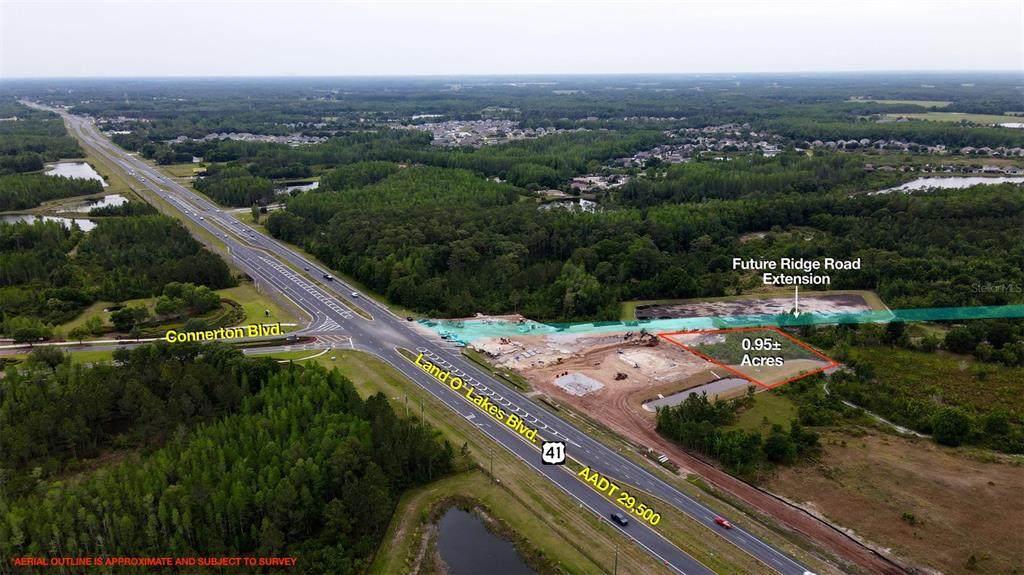 9077 Land O' Lakes Boulevard - Photo 1
