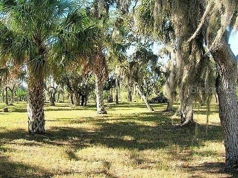 0 Limit Drive, New Port Richey, FL 34652 (MLS #U8122807) :: SunCoast Home Experts