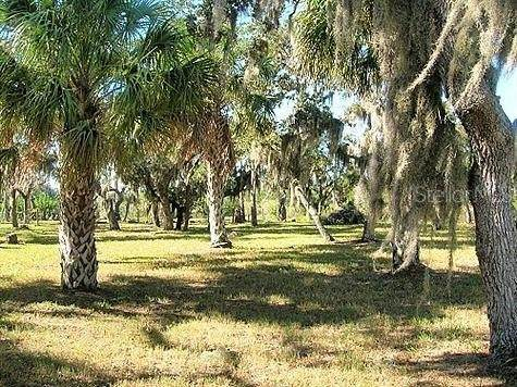 0 Limit Drive, New Port Richey, FL 34652 (MLS #U8122807) :: The Lersch Group
