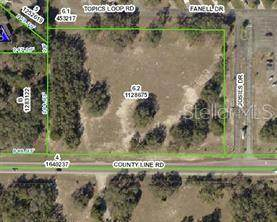 County Line Road, Spring Hill, FL 34609 (MLS #U8123232) :: The Lersch Group