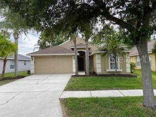 19306 Garden Quilt Circle, Lutz, FL 33558 (MLS #U8123358) :: The Nathan Bangs Group