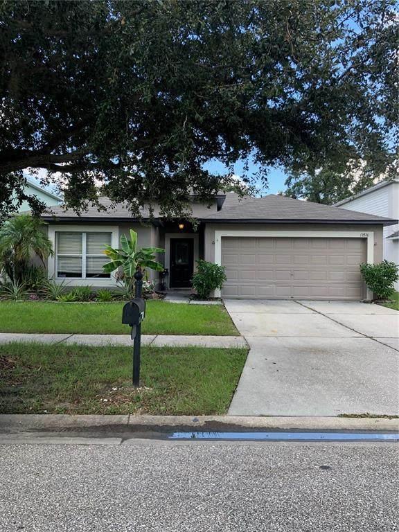 13516 Copper Head Drive, Riverview, FL 33569 (MLS #U8126383) :: Cartwright Realty