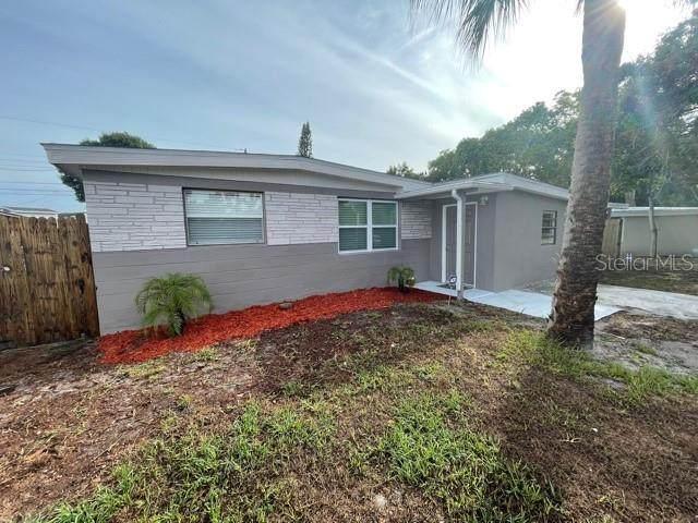 8217 Portulaca Avenue, Largo, FL 33777 (MLS #U8127417) :: Charles Rutenberg Realty
