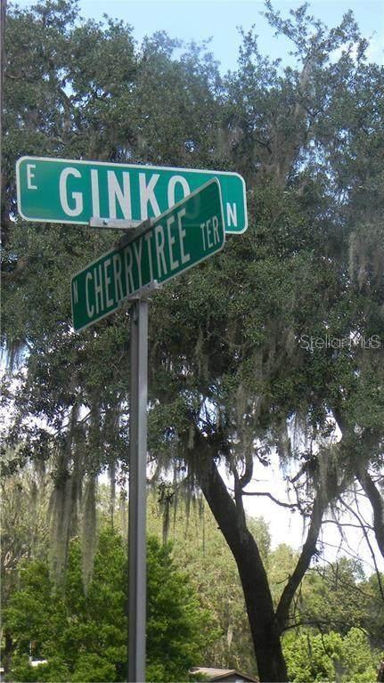 6500 N Cherrytree Terrace, Hernando, FL 34442 (MLS #U8129070) :: Globalwide Realty