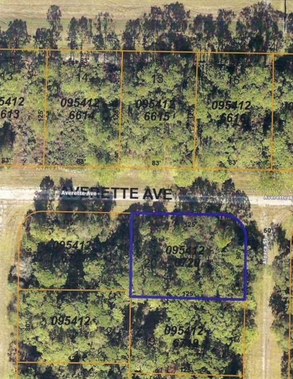 Alpaca Street, North Port, FL 34291 (MLS #U8131916) :: CARE - Calhoun & Associates Real Estate