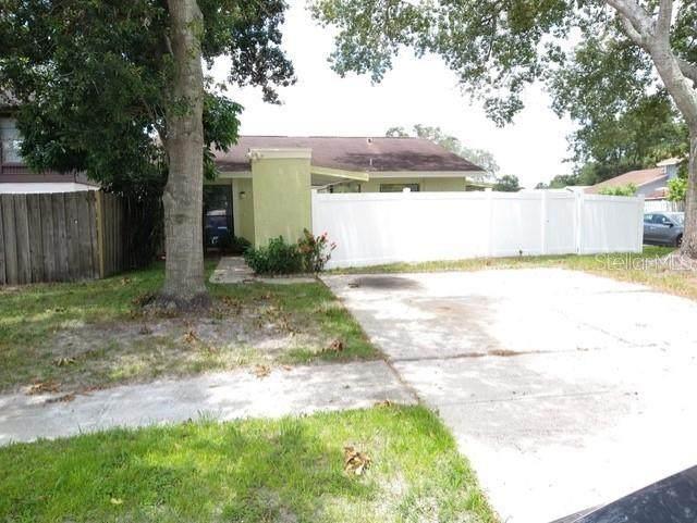10312 Fernglen Place, Tampa, FL 33624 (MLS #U8132434) :: Delgado Home Team at Keller Williams