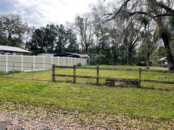 1414 May Street, Lutz, FL 33548 (MLS #U8133015) :: Premium Properties Real Estate Services