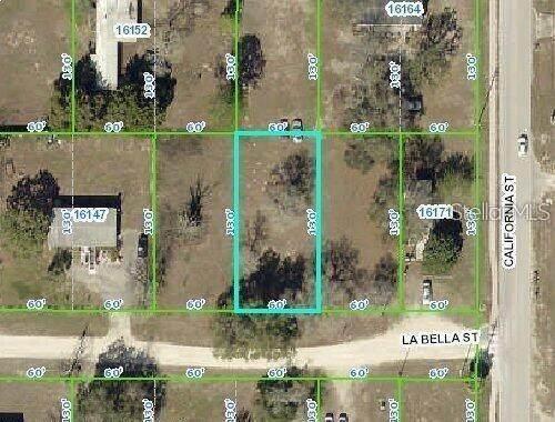 16159 La Bella Street, Brooksville, FL 34604 (MLS #U8133509) :: The Hustle and Heart Group